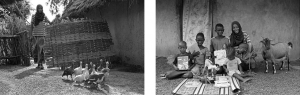 Région de Kédougou - Village de Madihou - Maymouna Diallo