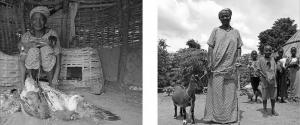 Région de Kédougou - Villade de Kafori - Sadio Kante