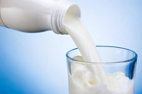 Investir : pour l'autosuffisance en lait au Sénégal