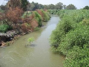 qffluent du fleuve jourdain