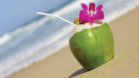 La noix de coco tout un trésor, à notre portée !