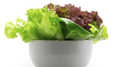 Astuce – Gardez votre salade » fraîche» plus d'une semaine !