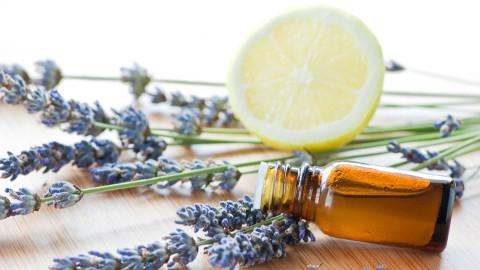 Secret de femme : Désodorisant naturel pour votre maison