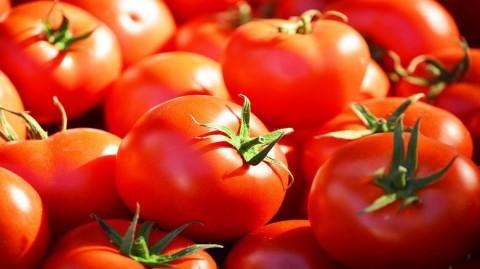 La tomate, notre alliée pour le soir de la fête