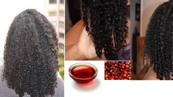 Cheveux secs et déshydratés ? Essayez le pré-poo à l'huile de palme